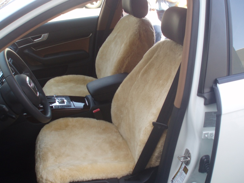 Leather bolster damage for Motor sheep seat covers